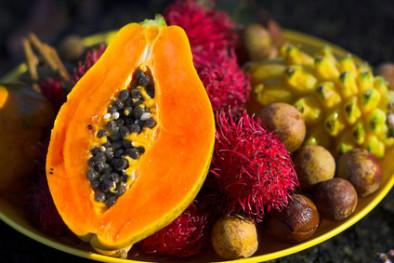 fermentovaná papája